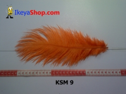 bulu kasuari medium KSM 9   feather  large